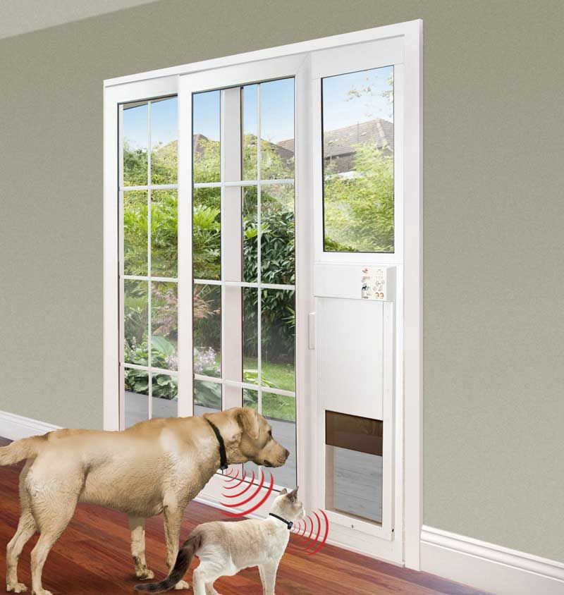 Having Pets Can Be Difficult Because They Love To Run Around The House Discover The Cost And Style Of Sliding Door For Your Pet Slidi Sliding Glass Dog Door Sliding Glass