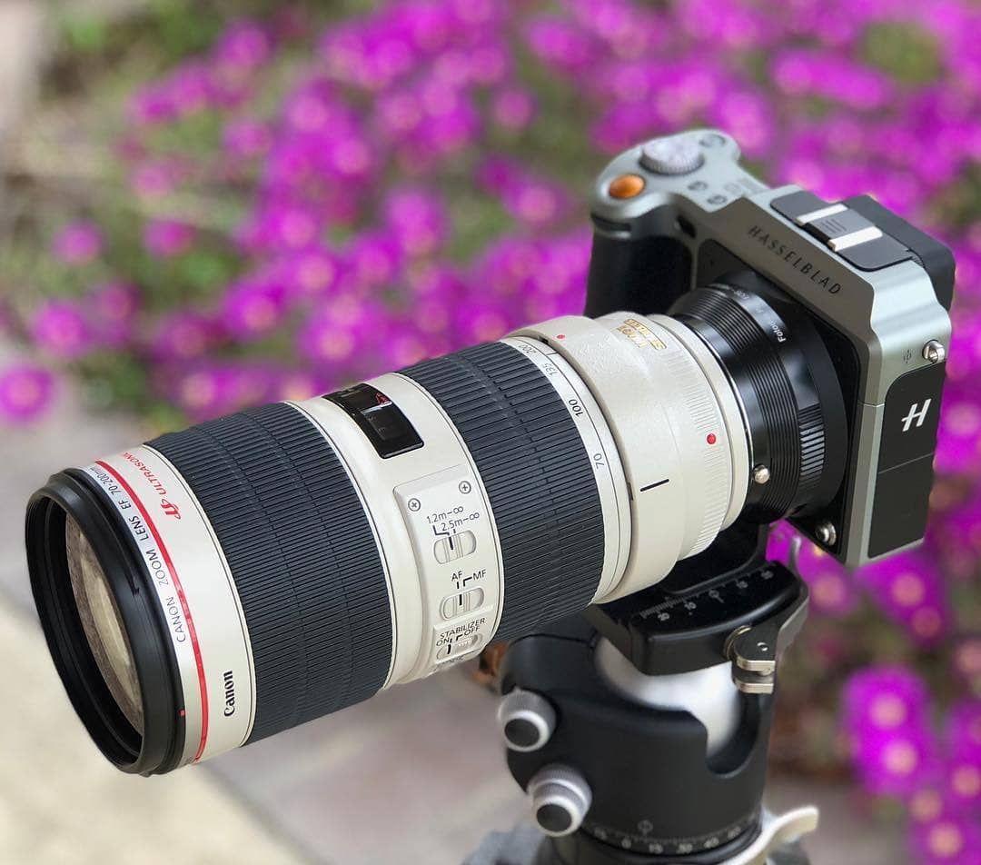Pin Pa Cameras