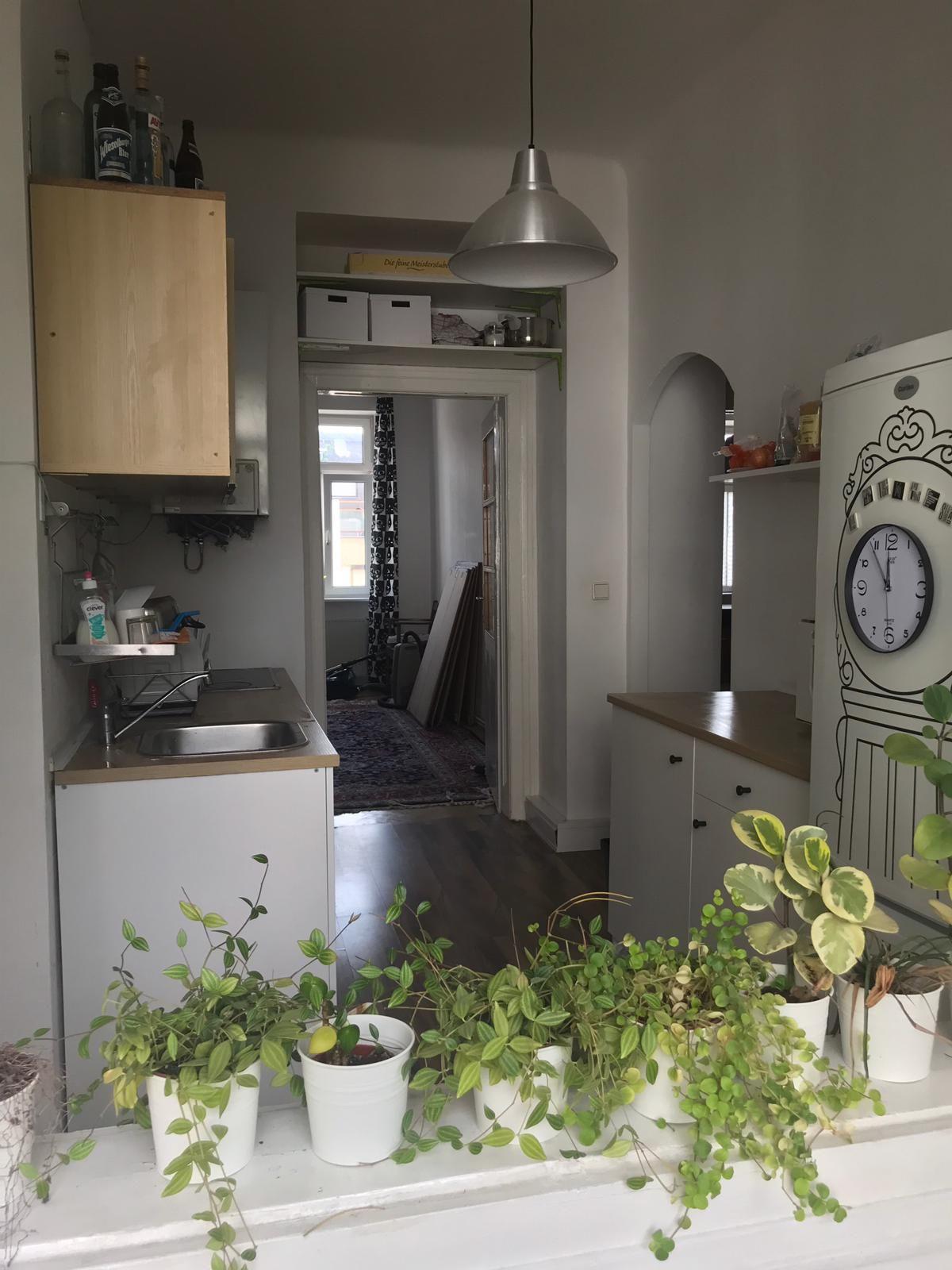 In Dieser Schonen Kuche In Wien Kochen Die Bewohner Gerne Gemeinsam Und Verbringen Gemeinsame Zeit Beim Essen Einrichtungsideen Haus Deko Kleine Topfpflanzen