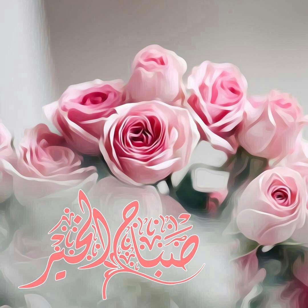 Pin By رغــــــد On بطـاقـات صبـاحيـة واسـلاميـة Good Morning Images Flowers Good Morning Flowers Beautiful Morning Messages