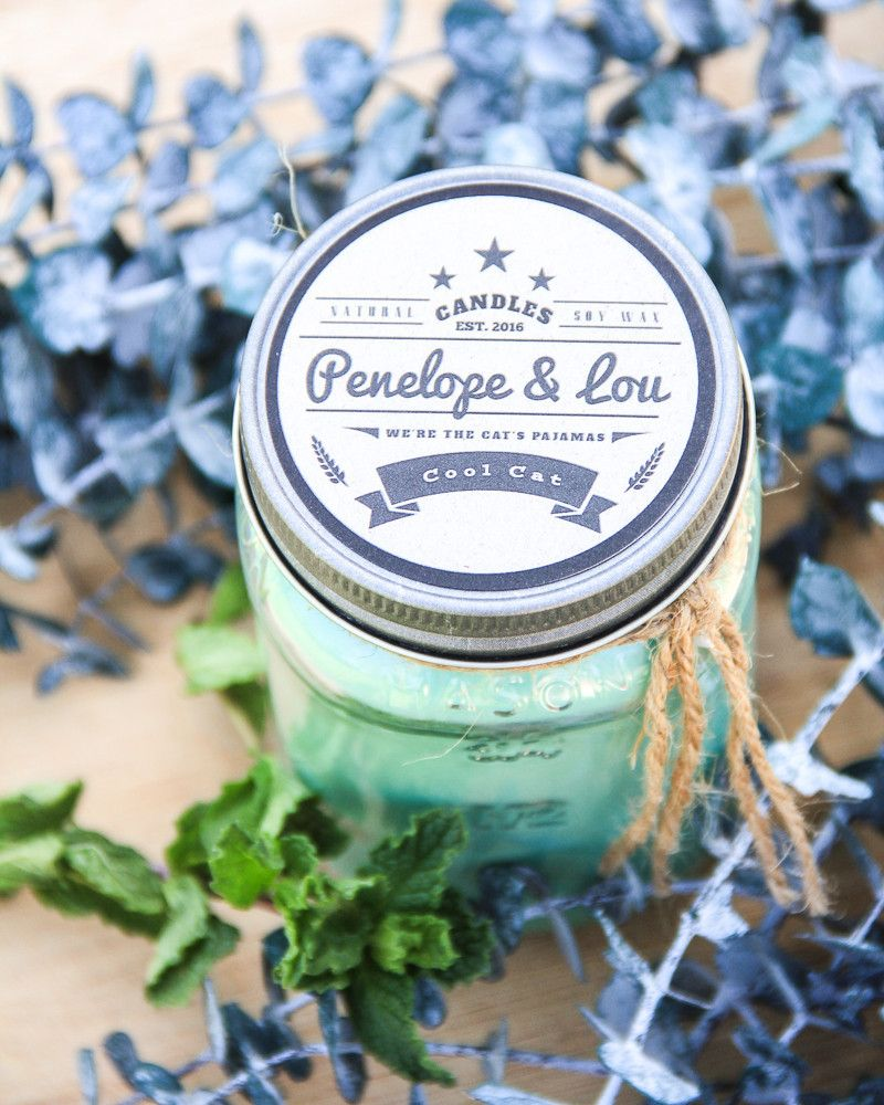 Cool Cat Soy Candle cool and minty. Great for allergy
