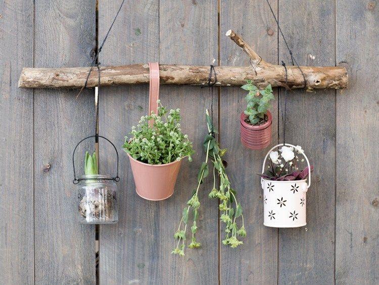 Diy Trend Kruidentuin : Diy hangplanten aan de muur mooie tuinen en planten