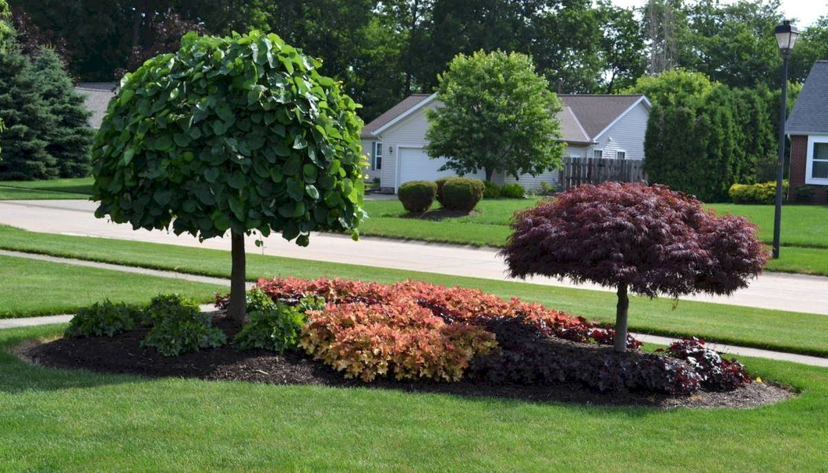 Stunning Front Yard Landscaping Ideas On A Budget 11