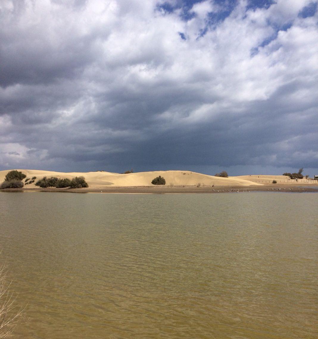 Gran canaria, las dunas de maspalomas