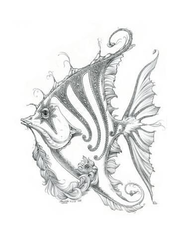 Aquatic Fish 2 Pencil Giclee Print by Jeff Haynie   Art com is part of Fish drawings - Aquatic Fish 2 Pencil Giclee Print by Jeff Haynie  Find art you love and shop highquality art prints, photographs, framed artworks and posters at Art com  100% satisfaction guaranteed