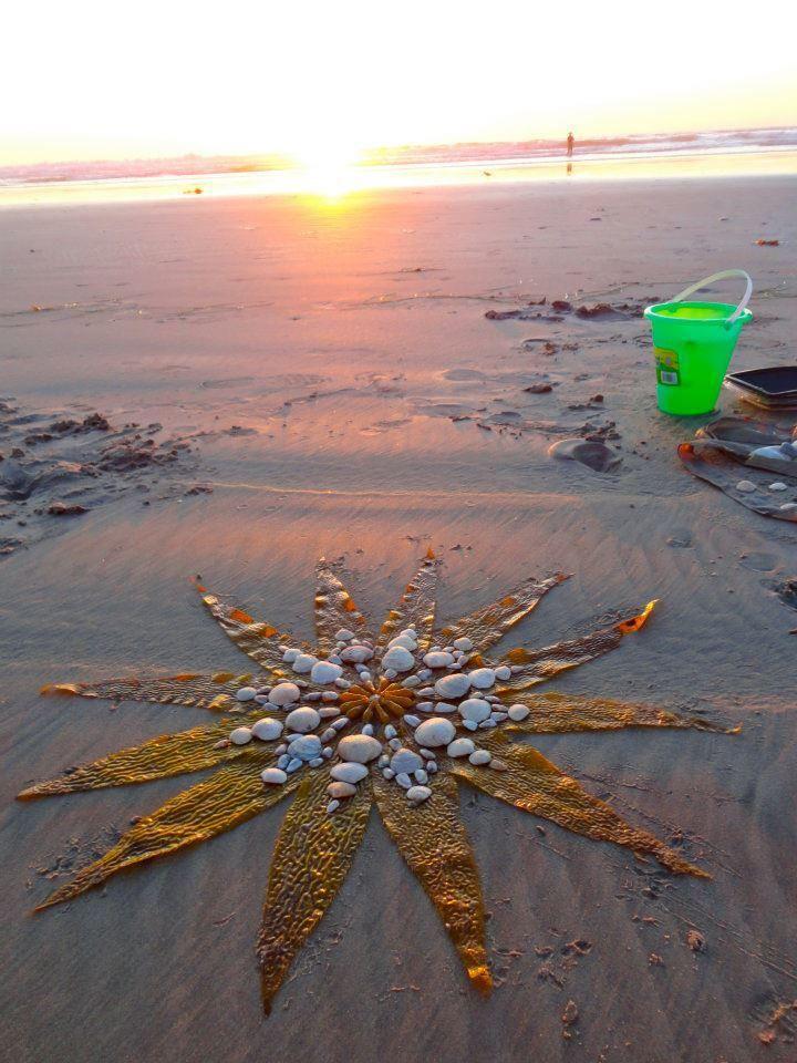Seaweed Shells Amp Sand Mandala Www Facebook Com Loveswish