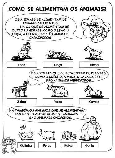 Atividades Sobre Animais Para Ensino Fundamental Parte 2