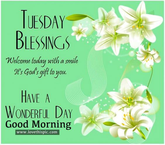 Good Morning Tuesday Blessing Images : Tuesday blessings have a wonderful day good morning