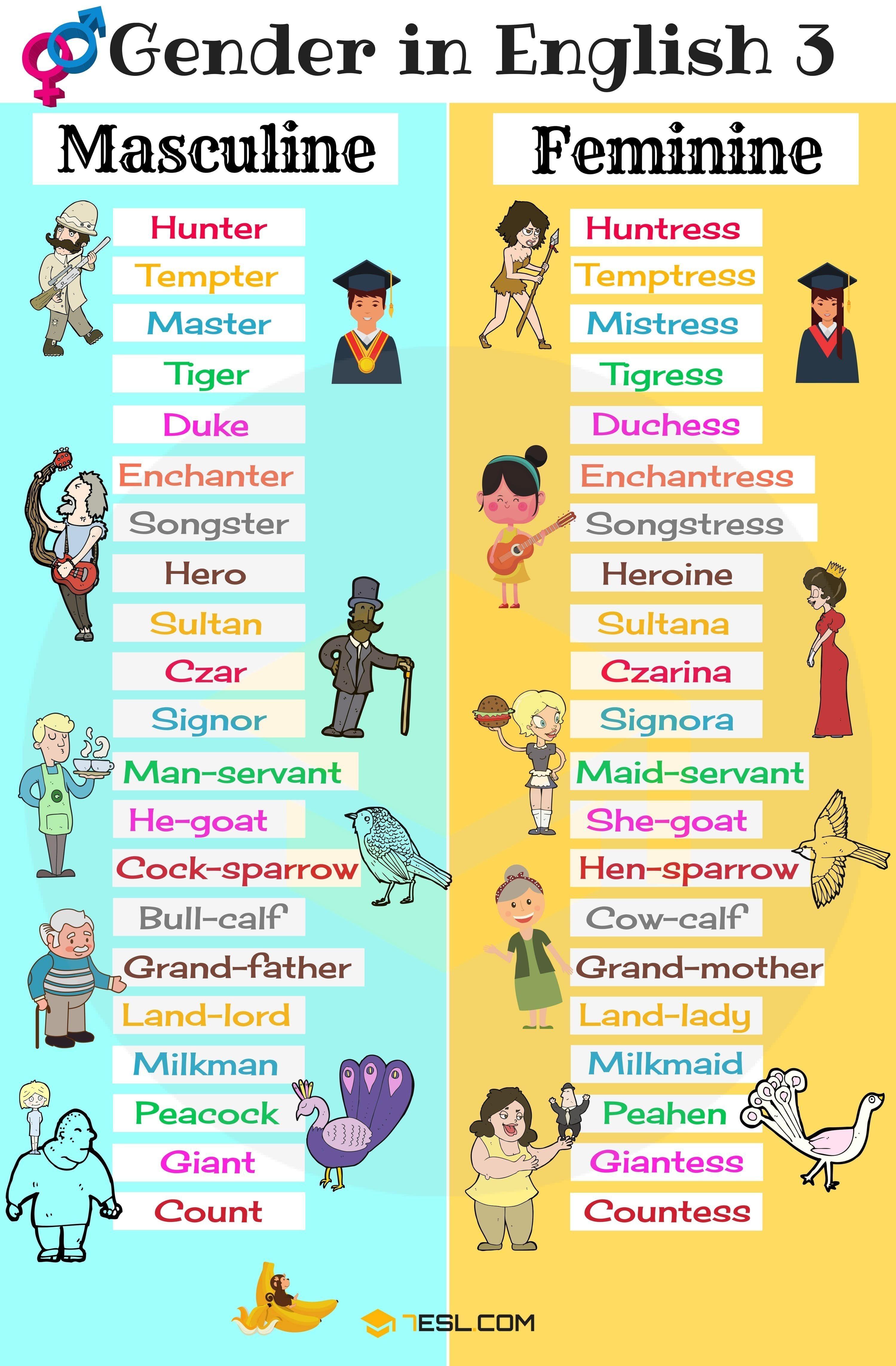 Masculine Feminine English Gender Useful Nouns List