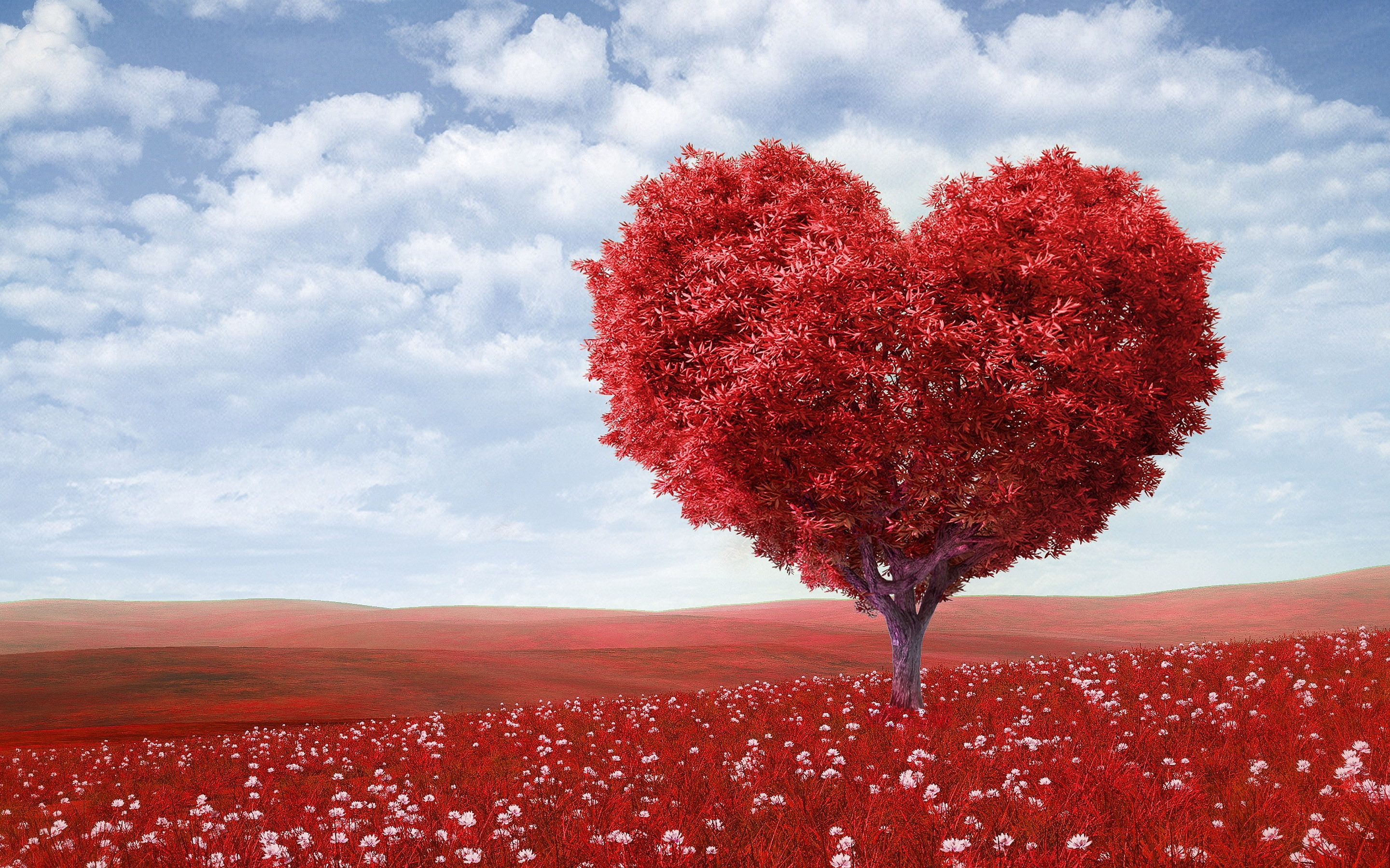 47 Outstanding Love Wallpapers For Couples To Download Heart Tree Love Wallpaper Love Images