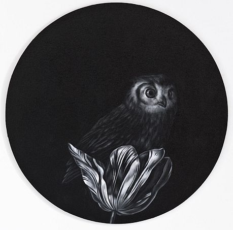 Shelley Reed - 'Owl in Tulip (after Fromantiou)' - Sears-Peyton Gallery