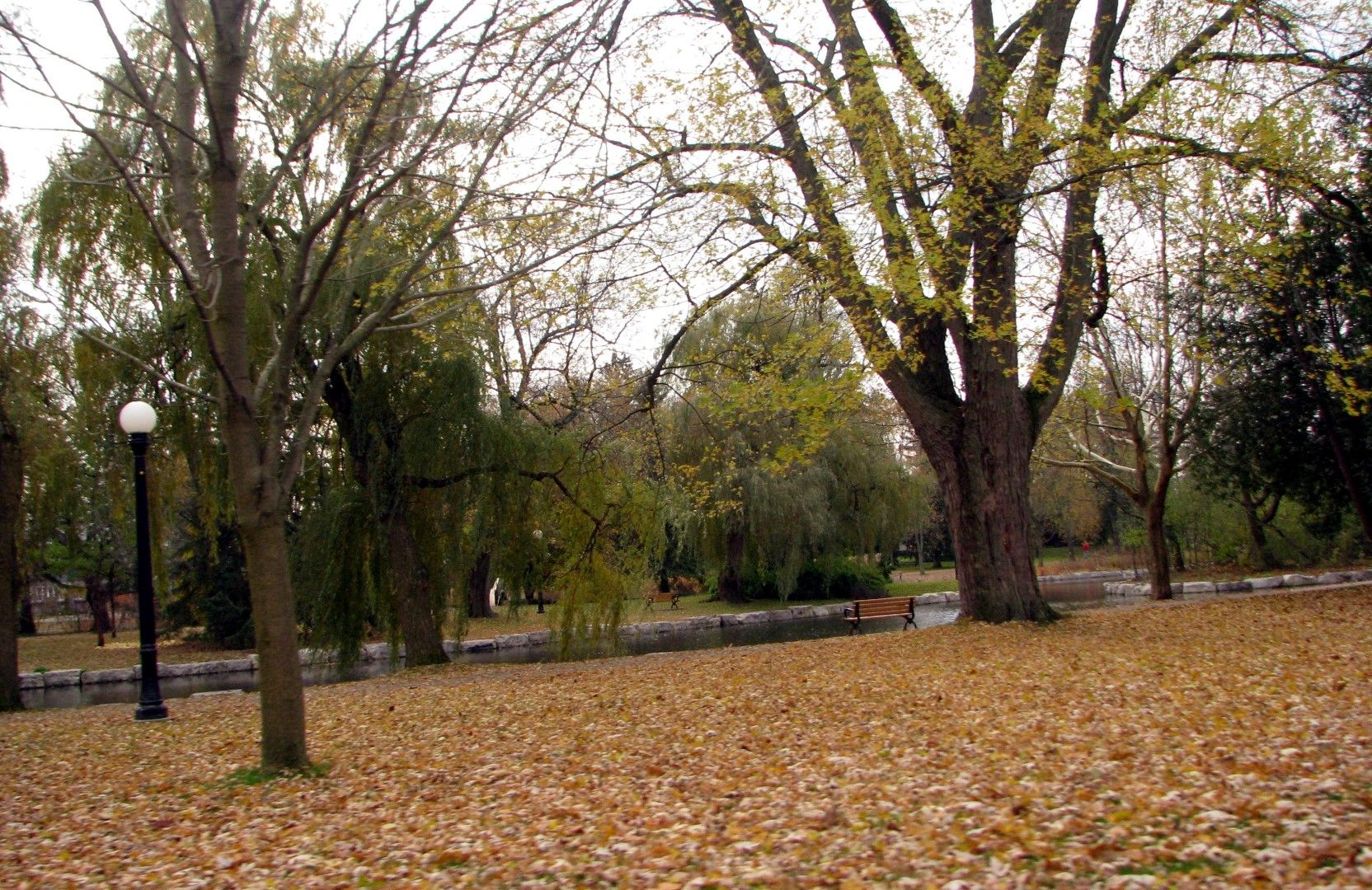 Victoria Park in Kitchener, ON.