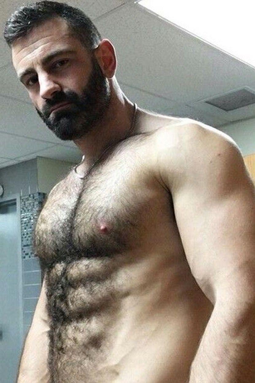 Bearded Furry Too