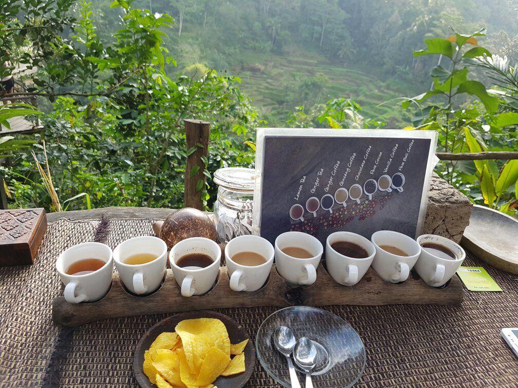 Bali Pulina Agro Tourism (Gianyar, Indonesia) Top Tips