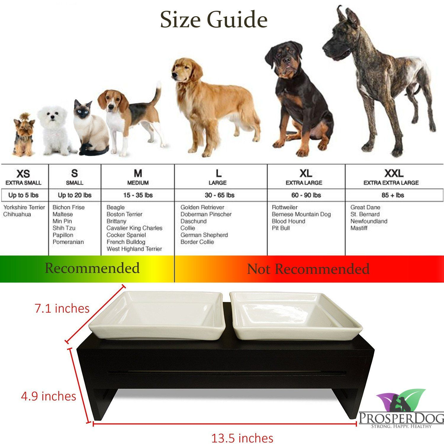 Prosperdog Pet Products The Dog Feeder And Cat Raised Pet Bowls For Small To Medium Dogs And Cats Puppy Feeding Sta Dog Feeder Cat Feeding Saint Bernard Dog