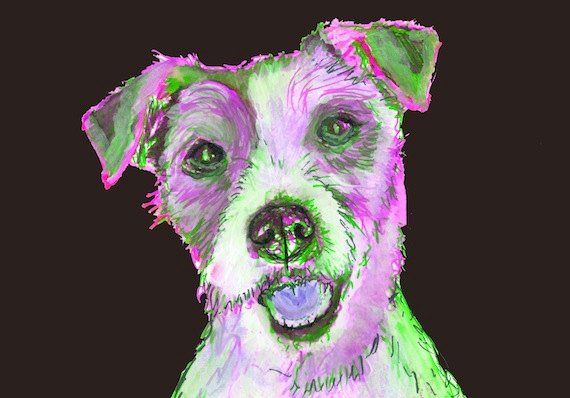 Jack Russell dog Painting, JRT dog Print,colorful dog painting, Dog por… #etsy #DogPortraits https://t.co/8AU9uQQStf
