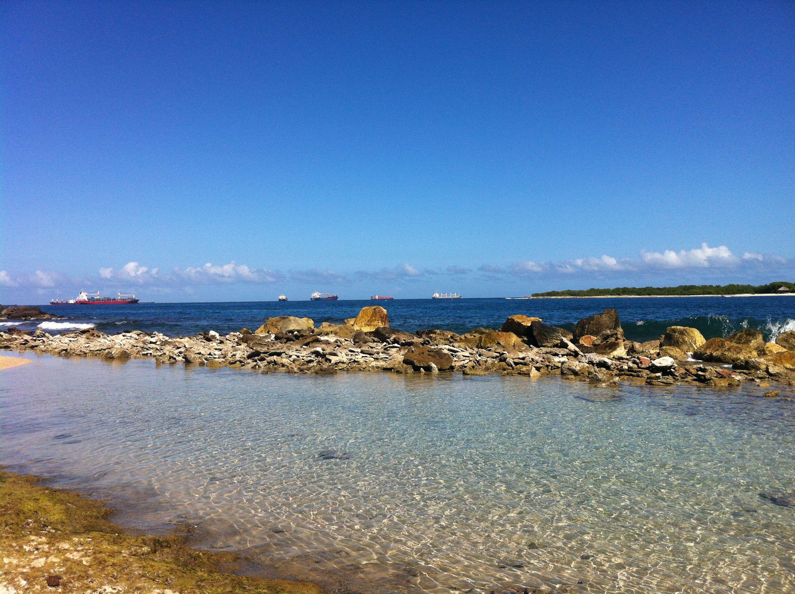 bufeaderos en Mar Azul.Puerto Cabello