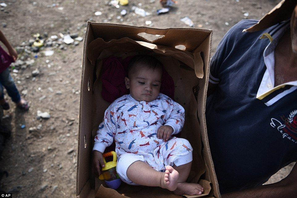 Hungary Reopens Border Crossing With Serbia After Five Days Baby