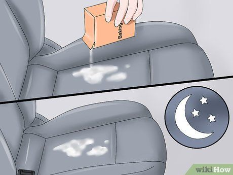 Image Led Get Dog Smell Out Of Your Car Step 7