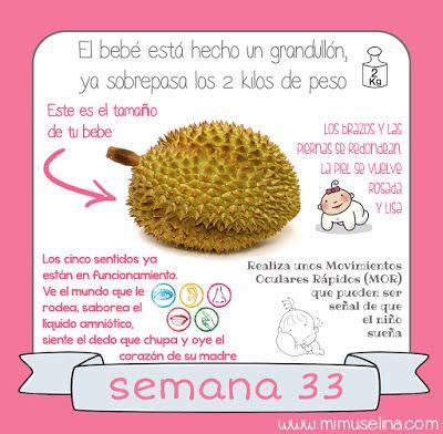 peso de bebe semana 33 de embarazo