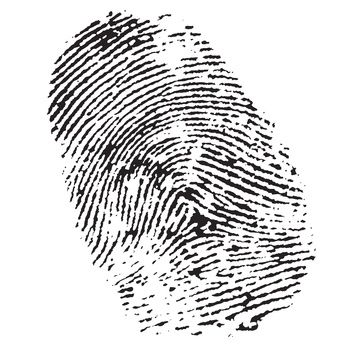 How to Make Your Own Fingerprint Kit | Forensic Science