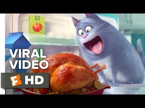 The Secret Life Of Pets Viral Video Meet Chloe 2016 Jenny Slate Animated Movie Hd Youtube Secret Life Of Pets Pets Movie Secret Life