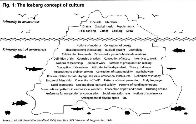 Cultural Iceberg Social Studie Middle School Culture Concept Of Difference Essay Personal Hook Encountering