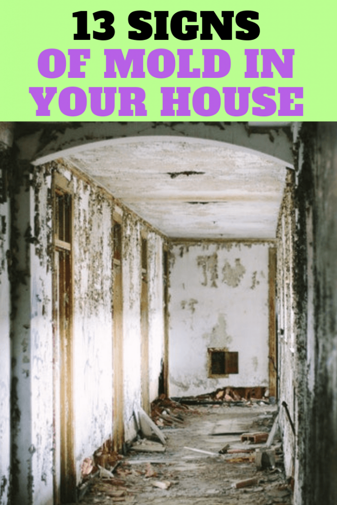 Signs Of Mold In Your House Can Affect You And Family S Health Sometimes It Is Hidden Behind Walls Under Carpets Identifying The