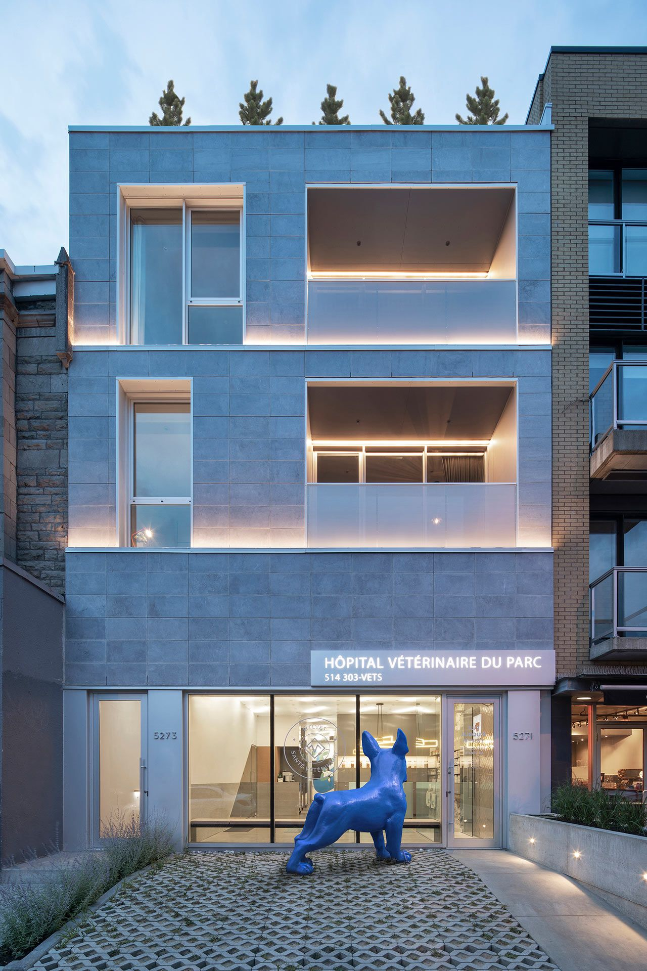 A Renovated State Of The Art Vet Clinic In Montreal Clinica
