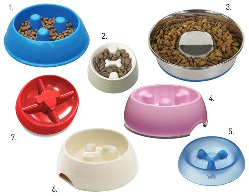Dog diet dog bowl