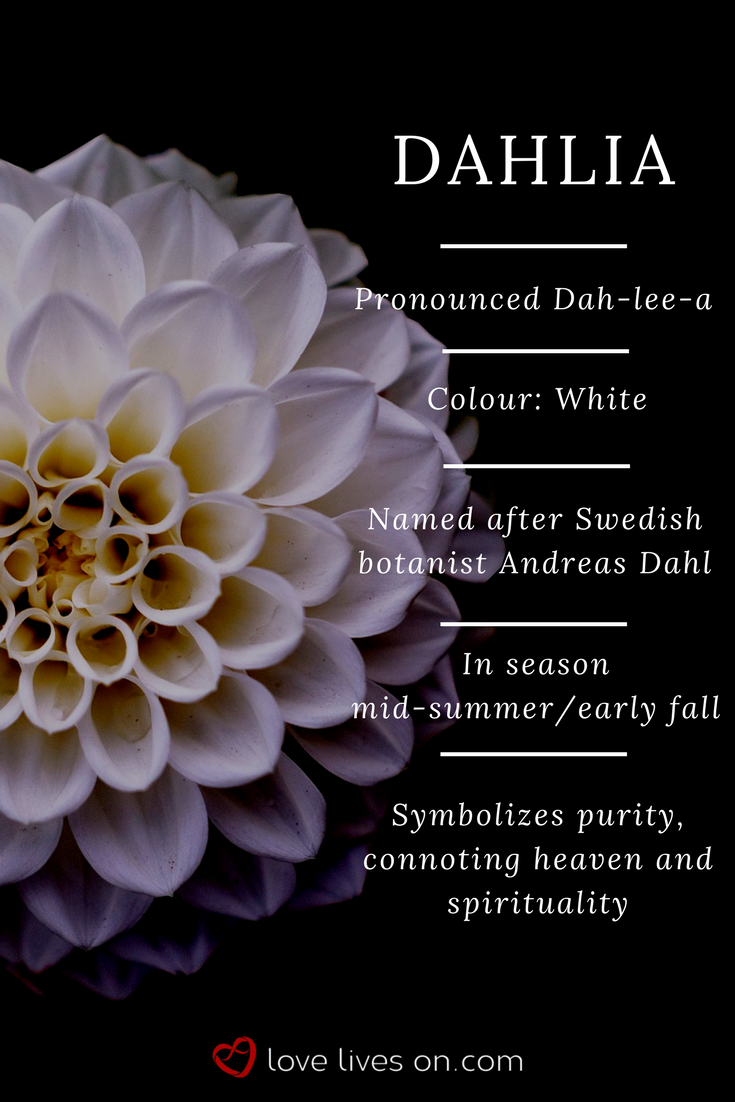 10+ Best Funeral Flowers Funeral flowers, Flower