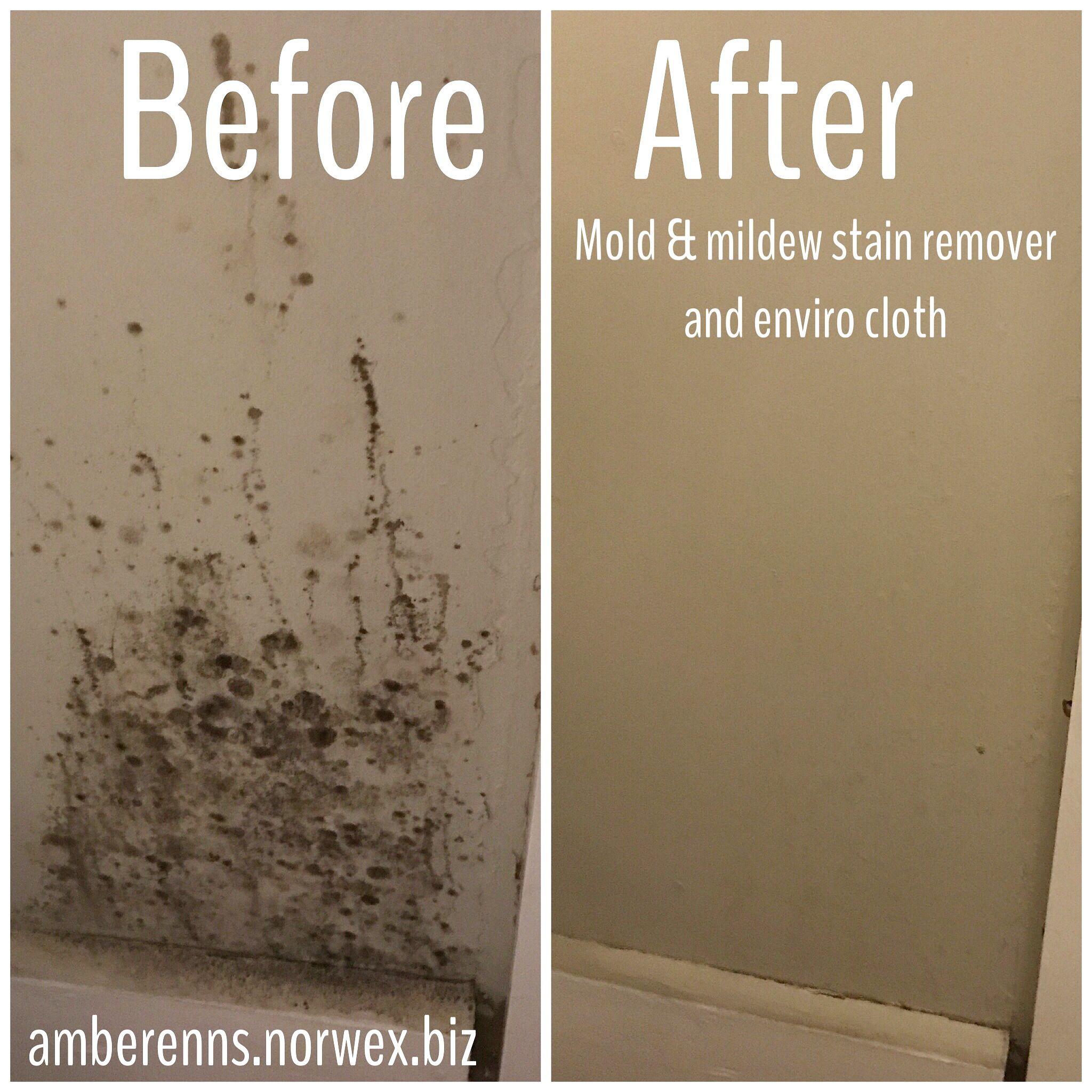 Diy Norwex Stain Remover