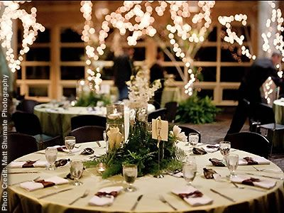 Woodland Park Zoo Seattle Weddings Washington State Wedding Venues 98103
