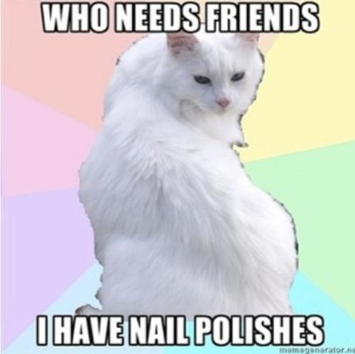 Beauty Addict Kitty Beauty Memes Beauty Addict