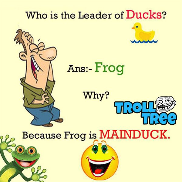 Who Is The Leader Of Ducks Funny Questions Killer Comedy Funny