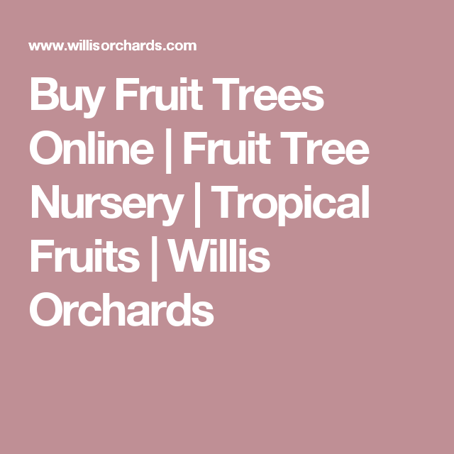 Fruit Trees Online Tree Nursery Tropical Fruits Willis Orchards