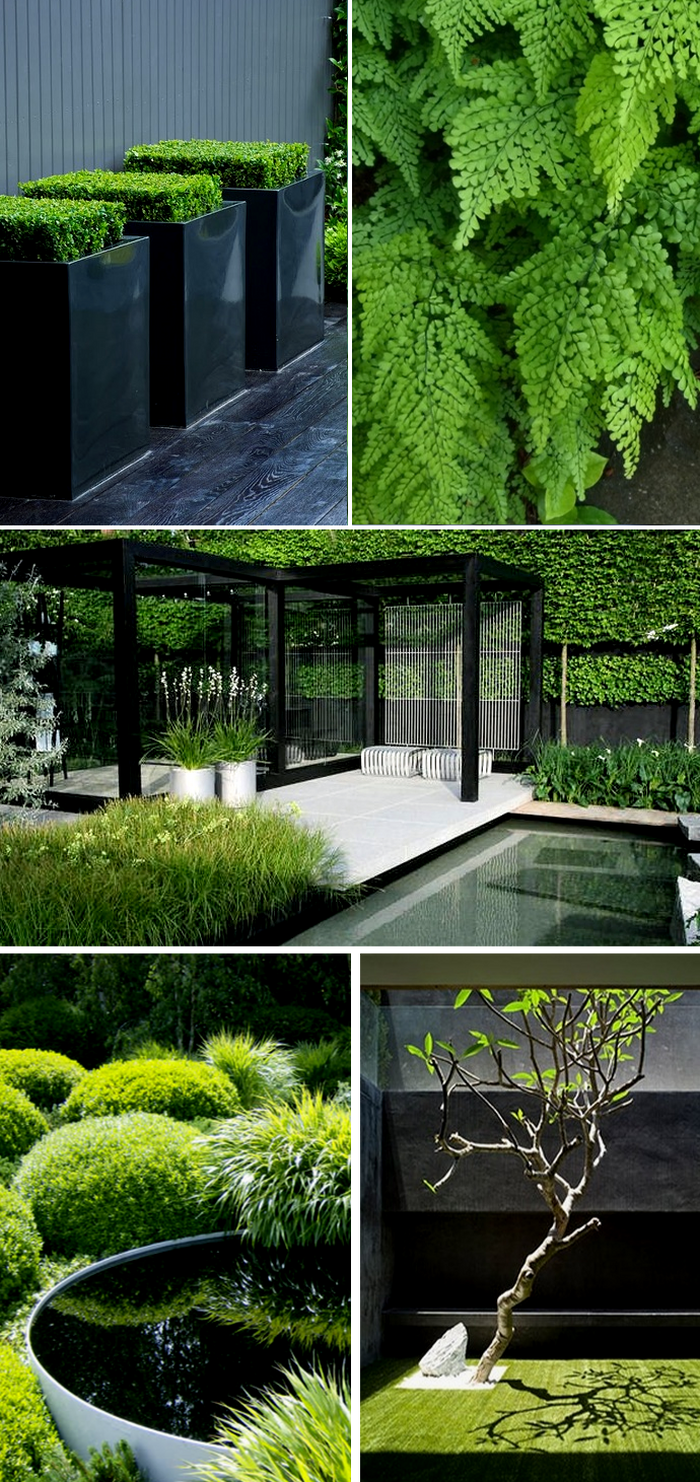 Grüner Garten, Garten Pool, Garten Terrasse, Mein Garten, Haus Und Garten,  Moderne Gärten, Garten Gestalten, Ideen Für Den Garten, Bepflanzung