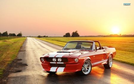 Shelby GT500 CR Convertible - shelby, muscle car, cars, one of a kind