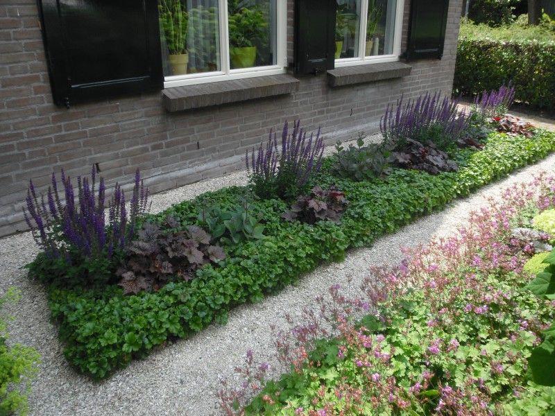 Onderhoudsvriendelijke tuin planten afbeeldingsresultaat for Landelijke tuin aanleggen