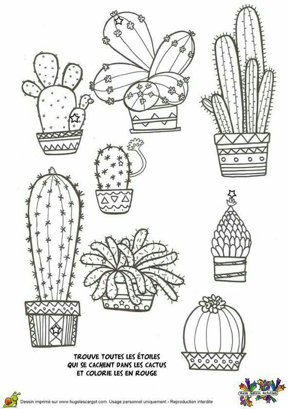 Cactus coloring page | Floral Coloring Pages for Adults | Pinterest ...