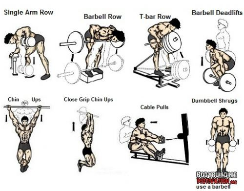 chest workout plan for exercise   fitness  chestworkout  gym workouts for beginners