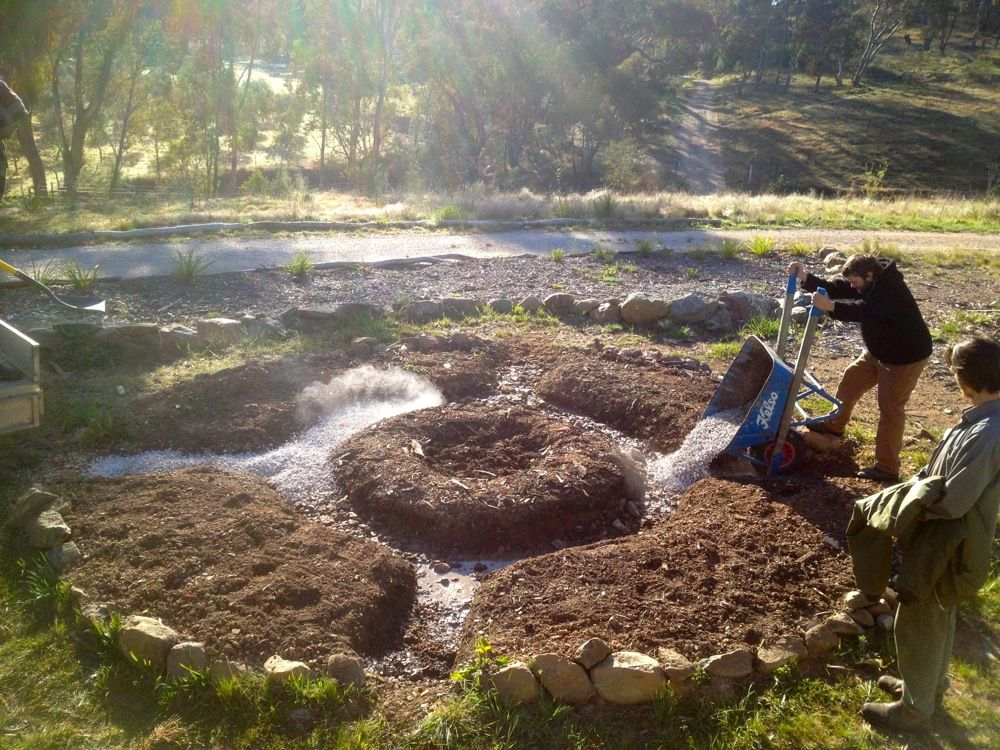 Permaculture micro forest gardening designing a food for Small permaculture garden designs
