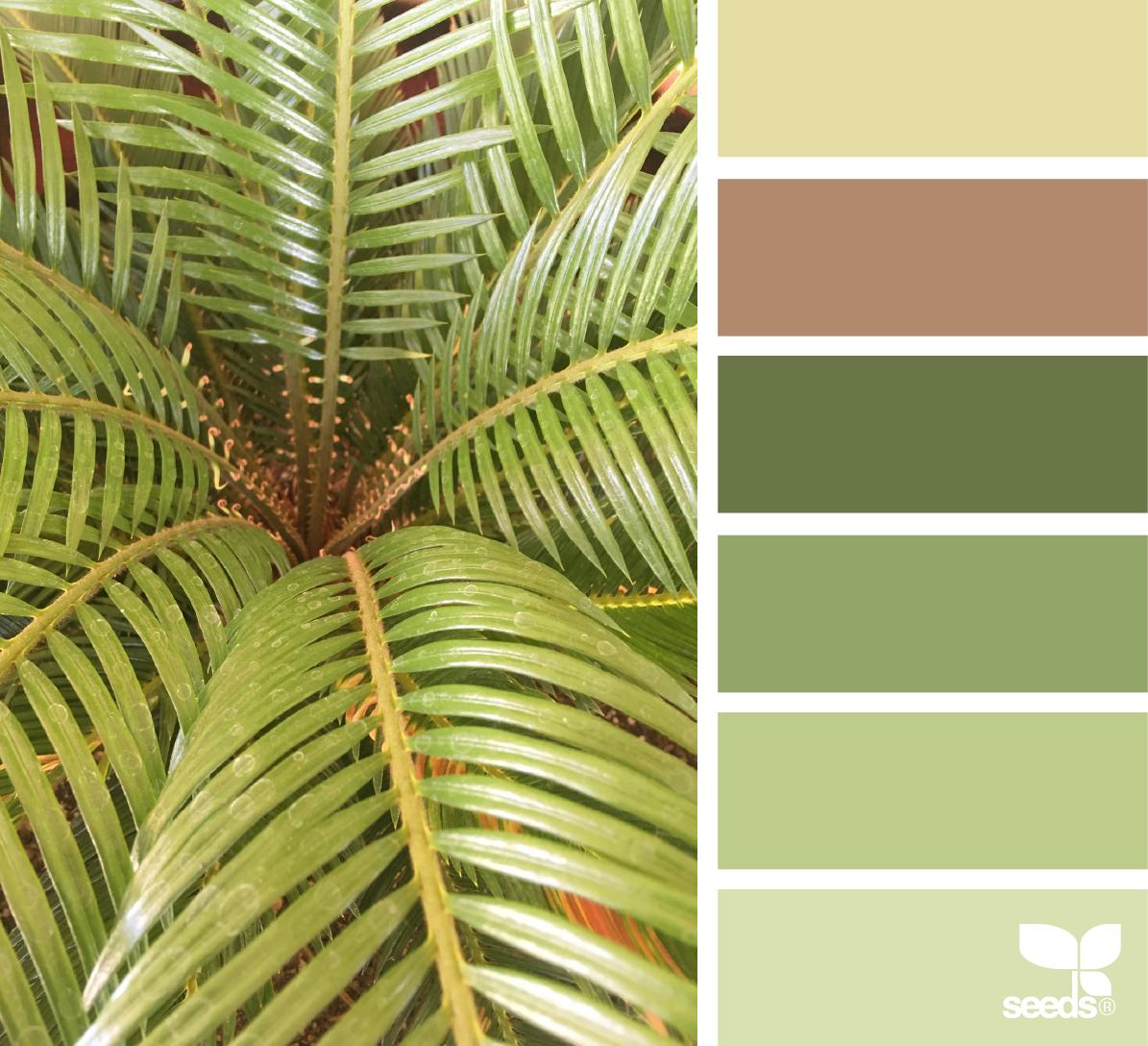 Color Frond   Design seeds, Color inspiration and Color pallets