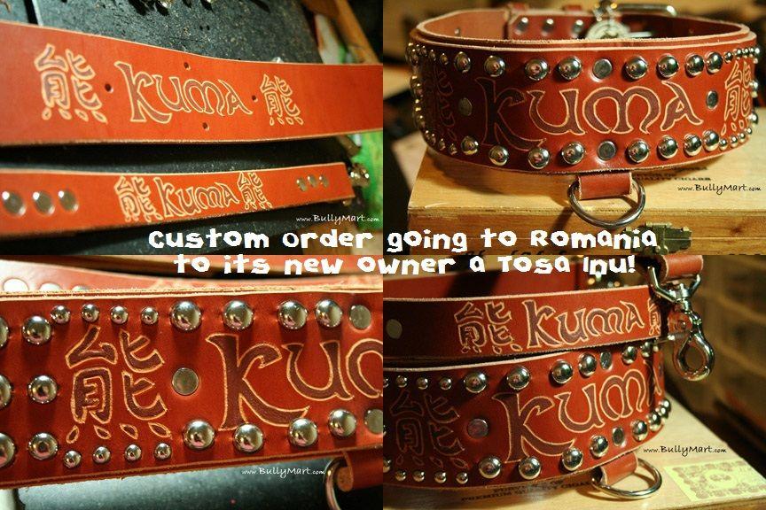 Custom Dog Collars by Bully Mart RANDOM FYI - Bully Mart