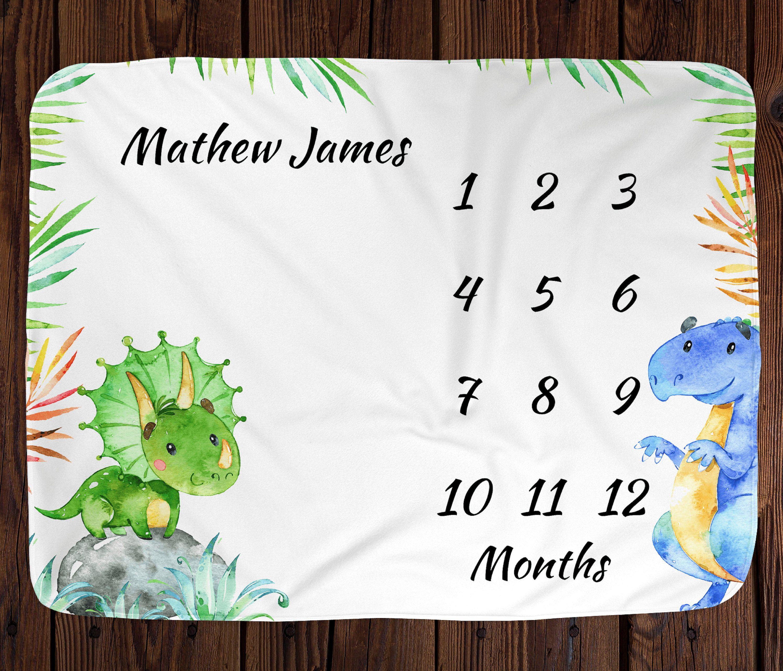 Baby Milestone Blanket Baby Month Blanket Dinosaur Milestone  Blanket Milestone Blanket Boy Personalized Milestone Blanket