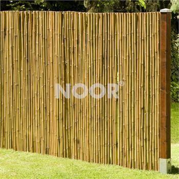 Bambuszaun für Balkon, Terrasse, Sichtschutz #bambussichtschutz Bambuszaun für Balkon, Terrasse, Sichtschutz #bambussichtschutz