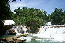 Cataratas de Agua Azul, Mexico.JPG
