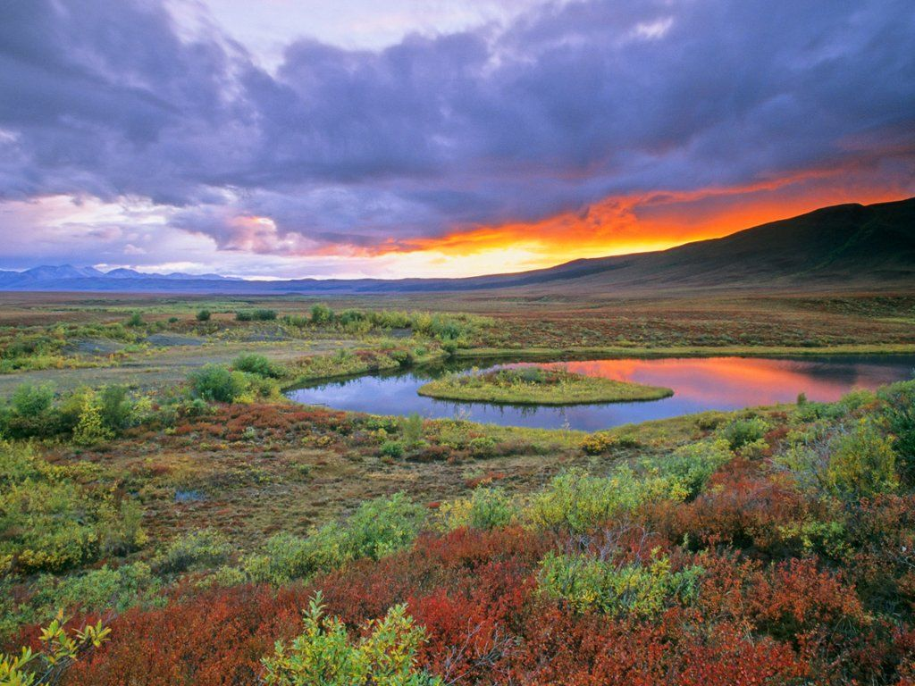 Northern Tundra and the Ogilvie Mountains, Yukon Territory