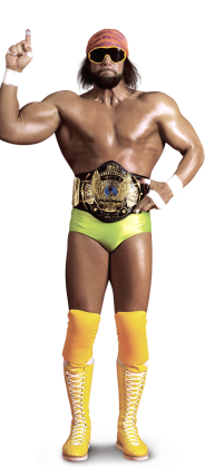 Randy Savage Wwf Superstars Wrestling Superstars Macho Man Randy Savage