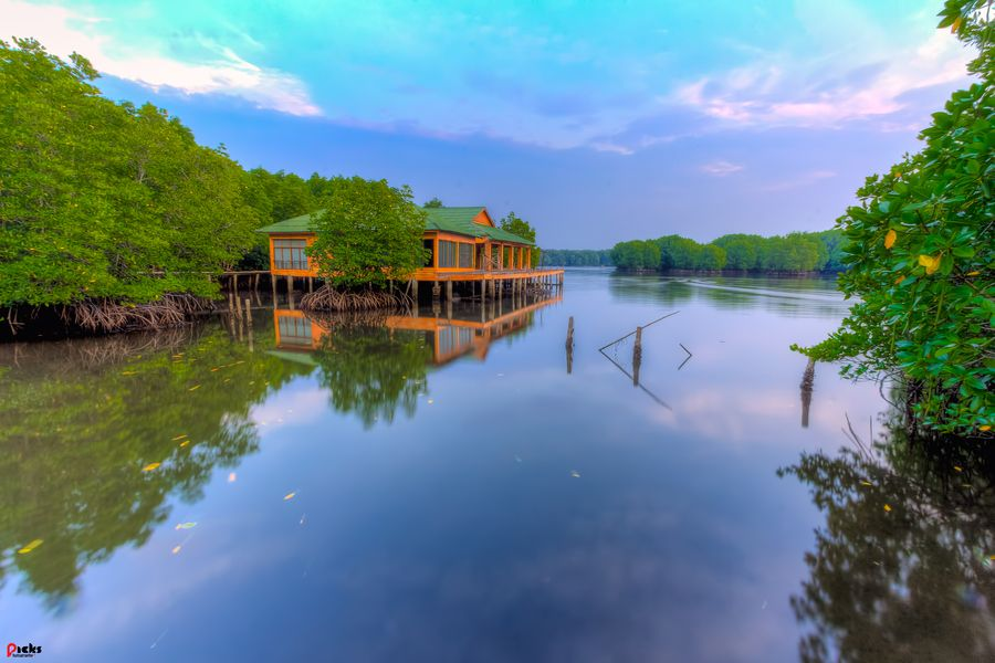 Forêt de Hoh | fantastic mangrove forest in Koh Kong Province, Cambodia. Credit